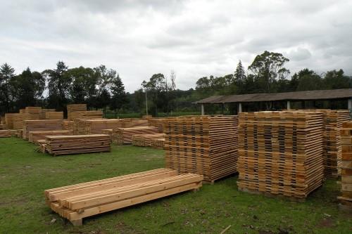 tlaxcala-produccion